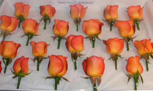 Orange Rose Dress Corsage & Buttonholes for Extended Family