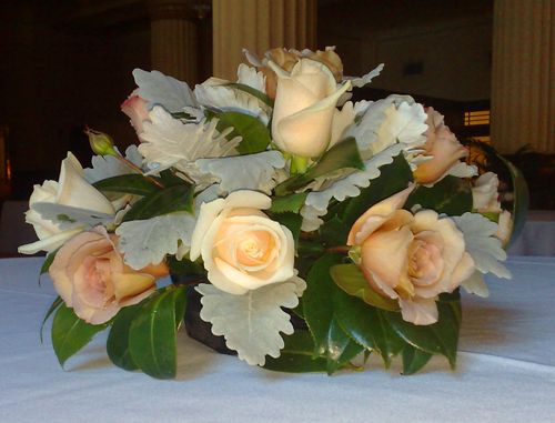 Bowl Arrangement with Dusty Miller, Apricot & Cream Roses