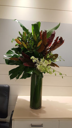 Gymea Lily, Orange Lily and White Orchids Concierge Flowers